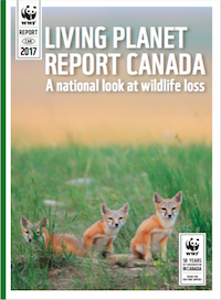 Living Planet Report Canada